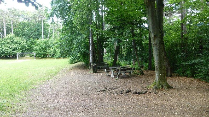 Guglzipf Berndorf Wandern Natur Wald