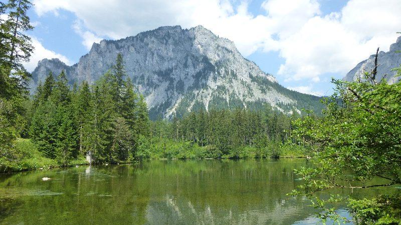 Grüner See Gruener See Steiermark Natur Wandern Kreuzteich Teich