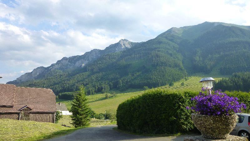Leopoldsteiner See Natur Wandern Schwimmen Steiermark Ausflug Badesee Vordernberg