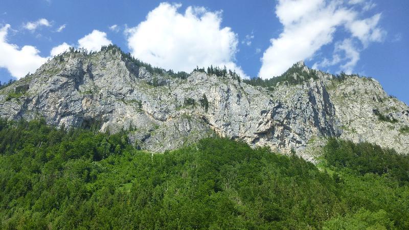 Leopoldsteiner See Natur Wandern Schwimmen Steiermark Ausflug Badesee
