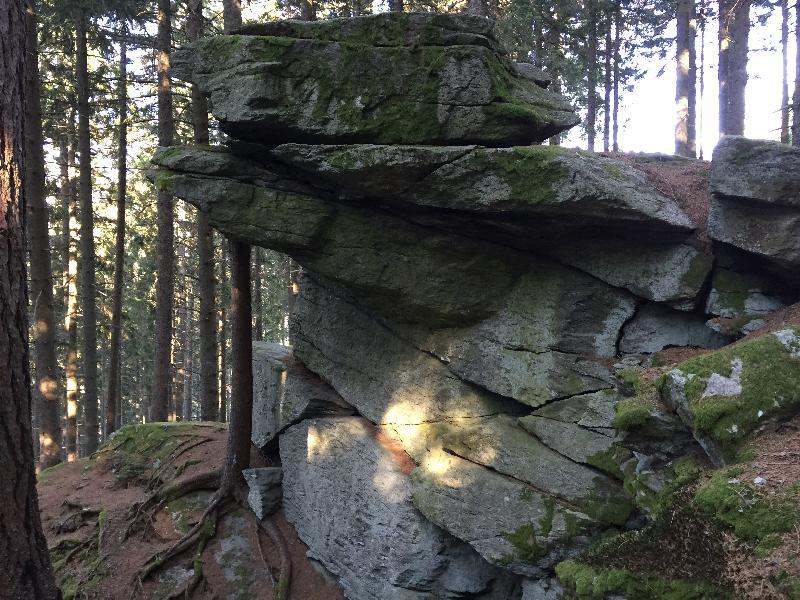 Wandern Natur Wald Mariensee Wildwasser Pöstlingbach Marienseer Schwaig Alm Berg Felsen Gestein Gesteinsformation