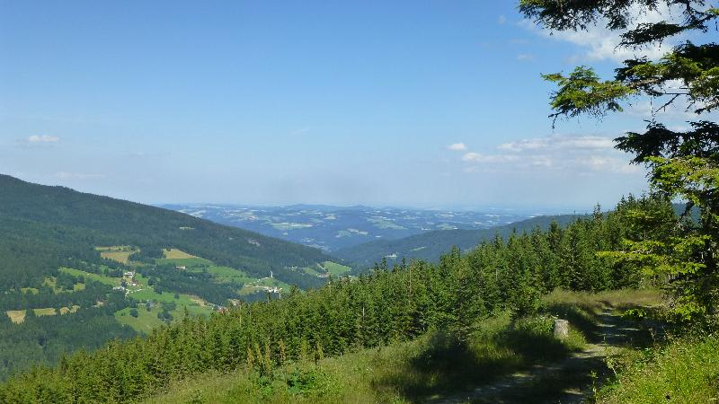 Wandern Natur Wald Mariensee Wildwasser Pöstlingbach Aussicht Wechsel