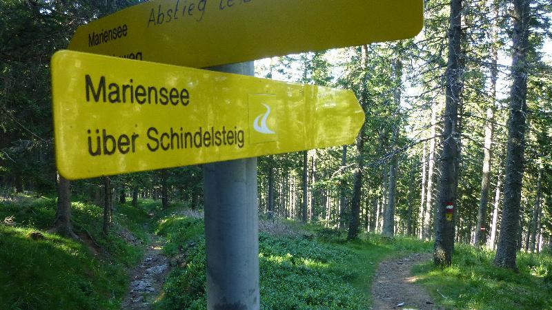Wandern Natur Wald Mariensee Wildwasser Pöstlingbach Marienseer Schwaig Schindelsteig