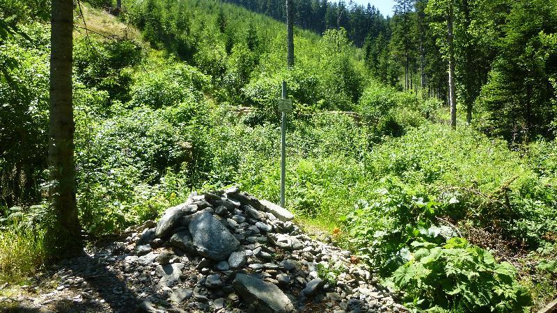 Wandern Natur Wald Mariensee Wildwasser Pöstlingbach Steinpyramide