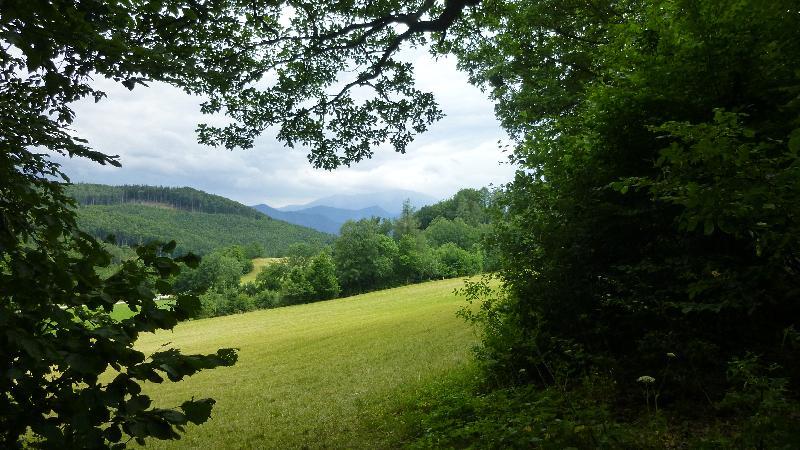 Steinwandklamm Wandern Wanderung Furth Klamm Rudolf Decker Steig Aussicht Schneeberg