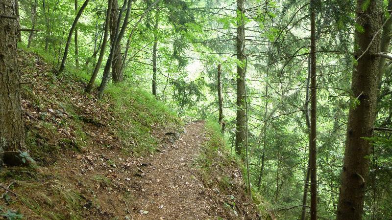 Steinwandklamm Wandern Wanderung Furth Klamm Rudolf Decker Steig