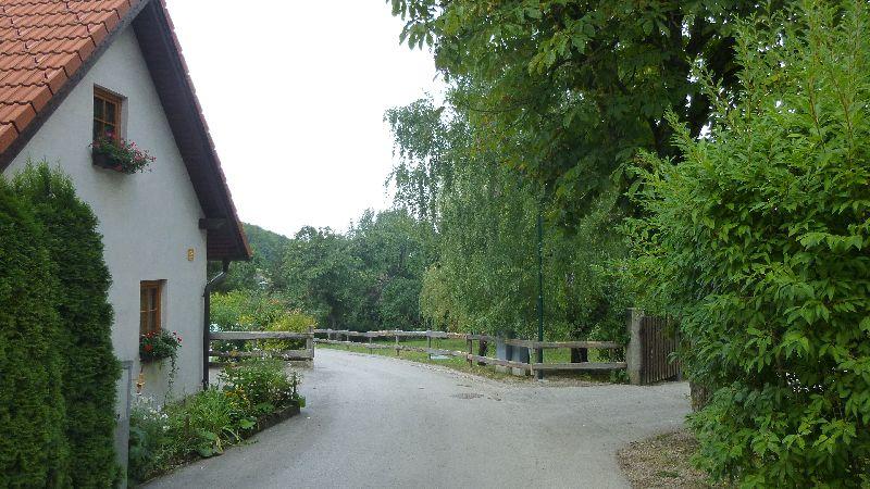 Maria Raisenmarkt Ruine Arnstein Peilstein Wandern Natur Wald Wanderung Holzschlag