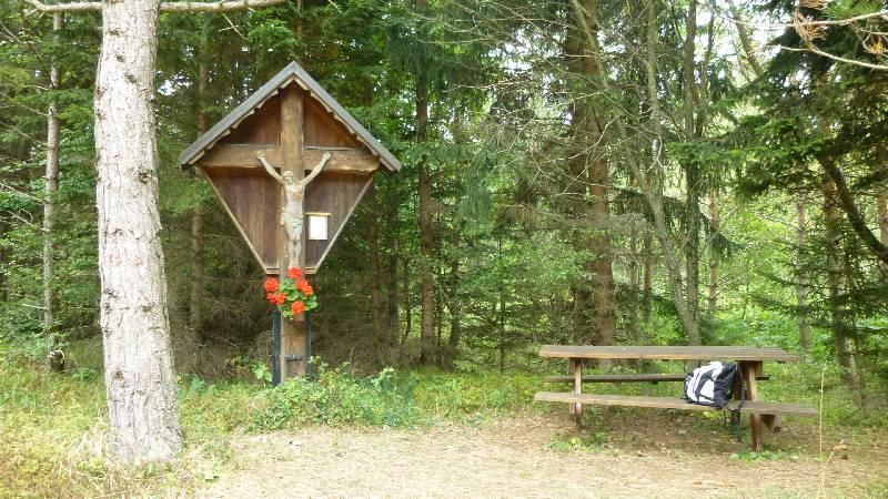 Johannesbachklamm Wandern Wanderung Natur Würflach Aussicht Hohe Wand Wald Rotes Kreuz