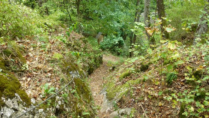 Johannesbachklamm Wandern Wanderung Natur Würflach Aussicht Hohe Wand Wald Ruine Schrattenstein