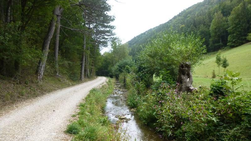 Johannesbachklamm Wandern Wanderung Natur Würflach Aussicht Hohe Wand Wald Greith
