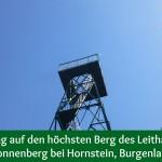 Wanderung auf den höchsten Berg des Leithagebirges