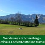 Wanderung am Schneeberg – Almreserlhaus, Edelweißhütte und Mamauwiese