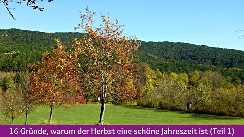 16 Gründe, warum der Herbst eine schöne Jahreszeit ist (Teil 1)