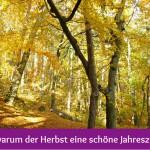 16 Gründe, warum der Herbst eine schöne Jahreszeit ist (Teil 2)
