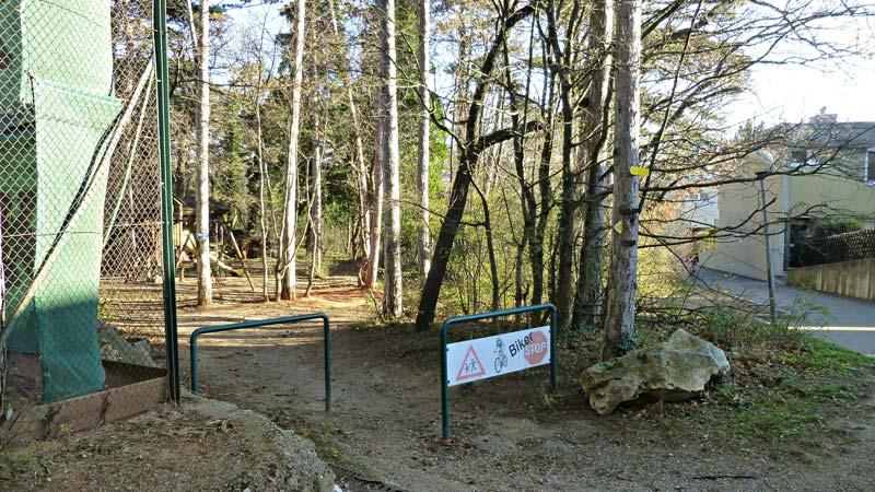 Harzberg Wandern Wanderung Natur Wald Aussicht Aussichtswarte Jubiläumswarte