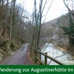 Einfache Wanderung zur Augustinerhütte im Helenental