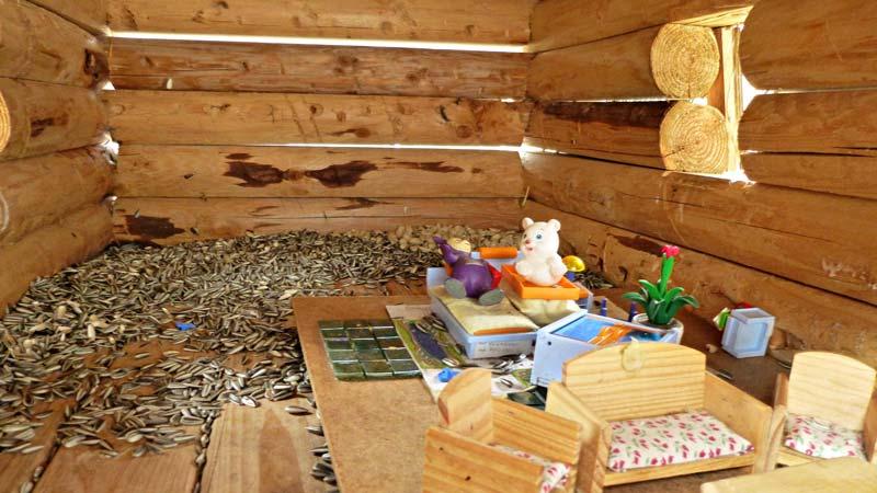 Wandern Wanderung Natur Helenental Augustinerhütte Vogelhaus