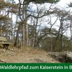 Über den Waldlehrpfad zum Kaiserstein in Bad Vöslau