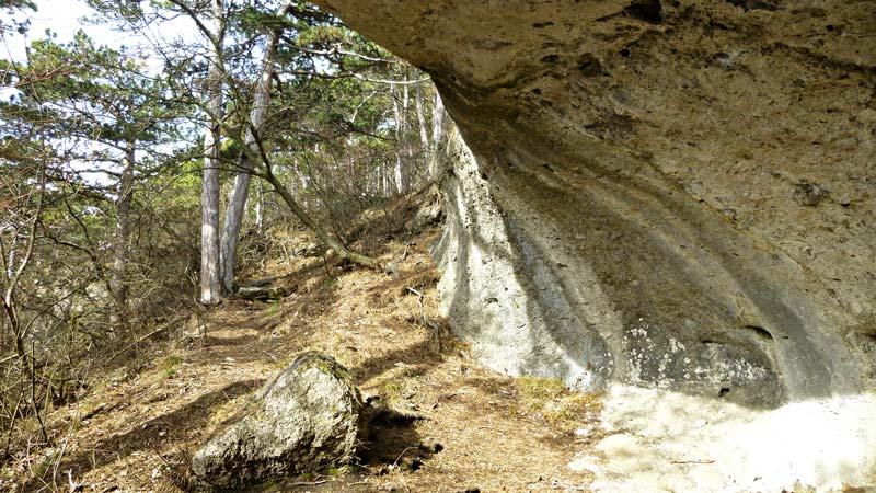 Kaiserstein Waldlehrpfad Bad Vöslau Wald Natur Aussicht Harzberg