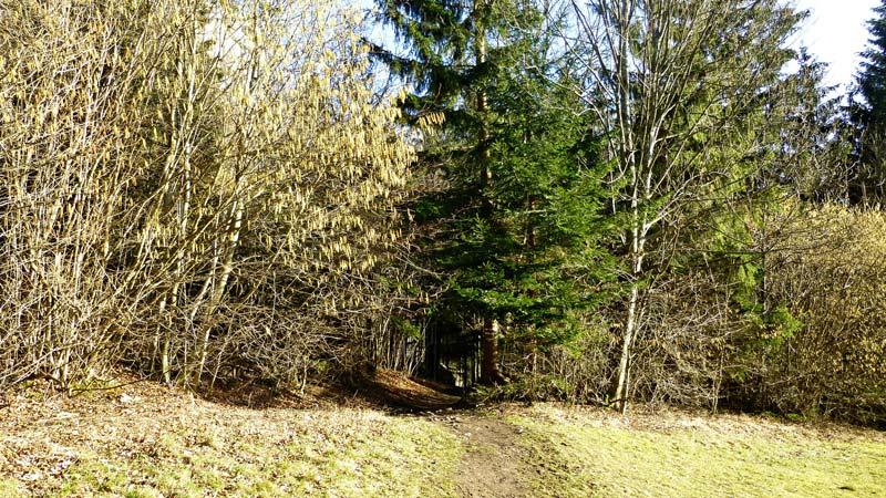 Myrafälle Wandern Wanderung Hausstein Aussicht Gipfelkreuz Natur Wald Ausflug Muggendorf Haussteinwiese