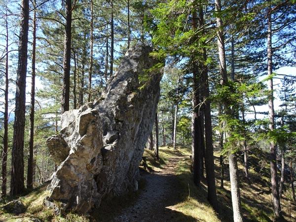 Mariahilfberg Gutenstein Wandern Wanderung Natur Wald Aussicht Schneeberg Grotte Kreuzweg Bäume Felsen Felswand