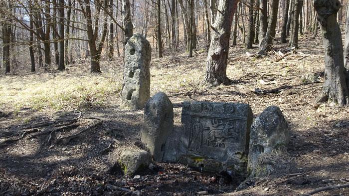 Naturpark Sparbach Wienerwald Wandern Wanderung Niederösterreich Ruine Tiere Streichelzoo Park Wald Natur Aussicht Dianaquelle