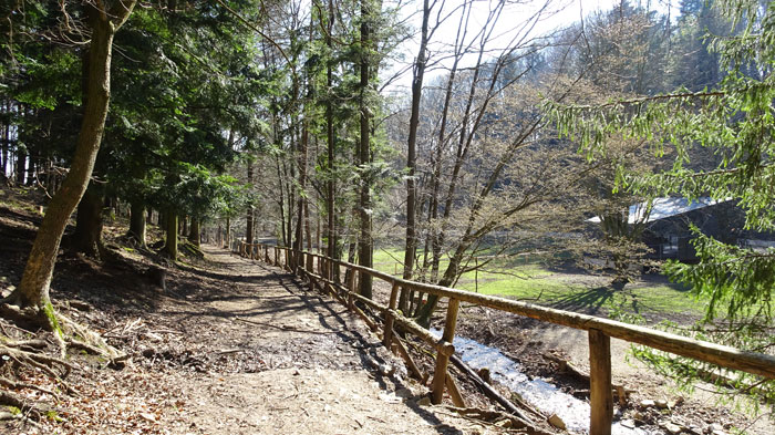 Naturpark Sparbach Wienerwald Wandern Wanderung Niederösterreich Ruine Tiere Streichelzoo Park Wald Natur Aussicht