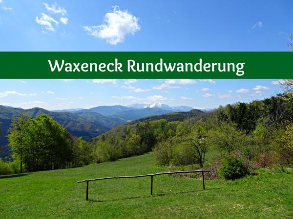 Waxeneck Rundwanderung Waxeneckhaus Wandern Wanderung Aussicht Schneeberg Feichtenbach Sanatorium Wald Natur