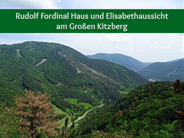 Rudolf Fordinal Haus Elisabethaussicht Großer Kitzberg Wandern Wanderung Niederösterreich Aussicht Waidmannsfeld Pernitz Natur Wald