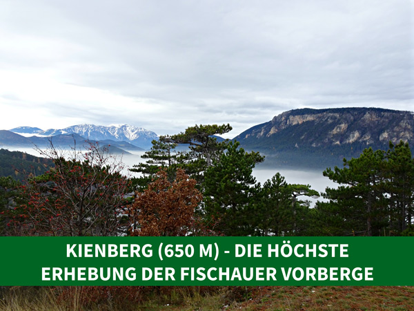 Single wandern niederösterreich