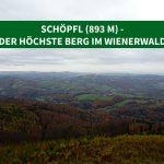 Schöpfl (893 m) – der höchste Berg im Wienerwald