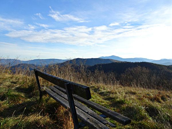 Kieneck Enzianhütte Enziansteig Matrassteig Aussicht Gipfelkreuz Gipfel Gutensteiner Alpen Wandern Wanderung Wald