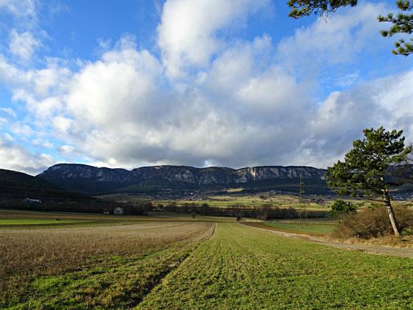 Hohe Wand Winzendorf Niederösterreich Wandern Wanderung Rundwanderung Rundwanderweg Steinernes Bankerl Aussicht Wald Waldandacht Natur Bewegung